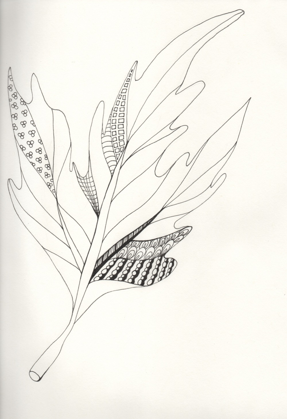 zentangle_leaf_4